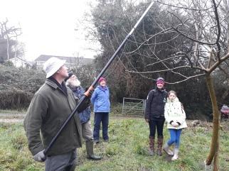Pruning workshop Feb 2018 2